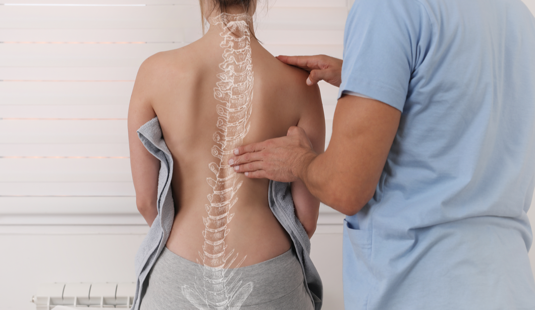 Benefits of Using Chiropractic Mentor to Master Joint Manipulation